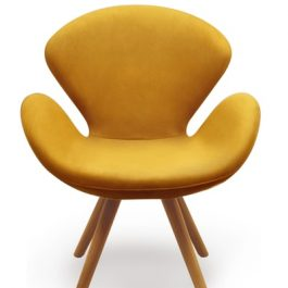 Mollis Designer Chair